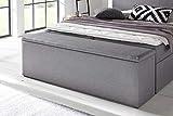 Furniture For Friends Möbelfreude® Bettbox Nelli Hellgrau | Aufbewahrungsbox für Boxspringbetten und Polsterbetten | Sitztruhe 160 x 40 x 51 cm