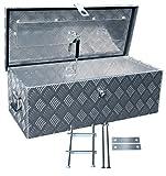 Truckbox D055 +MON2012 Werkzeugkasten, Deichselbox, Transportbox