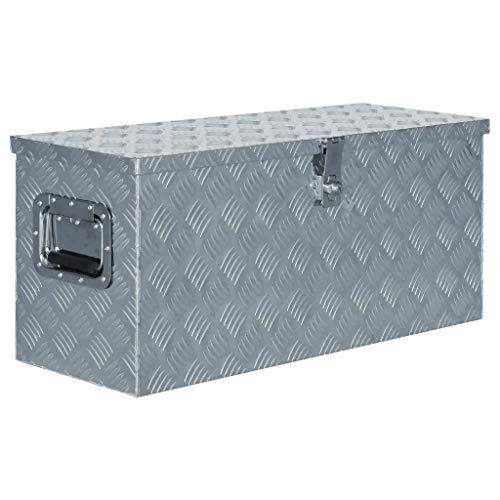 WENXIA Alubox | Allzweck-Transportkoffer | Deichselbox | Aufbewahrungsbox | mit Verriegelungssystem | Silber 80 × 30 × 35 cm