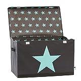 STORE IT - Spielzeugtruhe für Kinder - Truhe mit Deckel - Große Aufbewahrungsbox, Spielzeugkiste für das Kinderzimmer - 62x37,5x39cm - grau/ mintgrün - STERN